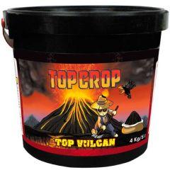 Top Vulcan 4 kg (harina de lava)